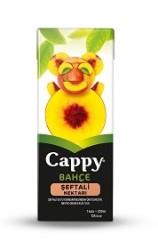 CAPPY - CAPPY 200ML ŞEFTALİ