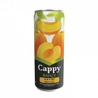 CAPPY - CAPPY KUTU KAYISI NEKTARI CAN